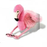 Flamant rose-Flamingo