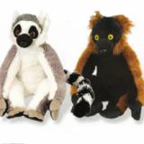 Lémurien - Lemur