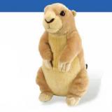 Marmotte-Prairie dog