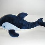 Dauphin - Dolphin