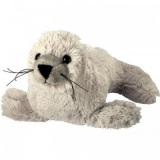 Phoque blanc - White seal