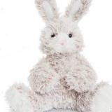 Lapin sable Ragga- Rabbit