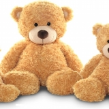 Famille ours miel Honey family bear