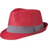 Chapeau rouge et gris - Red hat