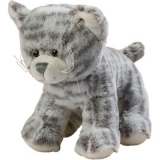 Chat gris - Grey cat
