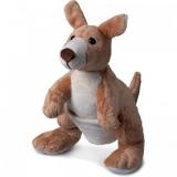 Kangourou marron - Brown kangaroo