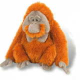 Oran outan -Orangutan Plush toy