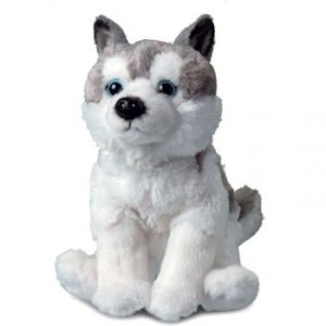 Husky plush customizable
